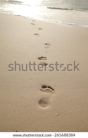 women feet in the sand sunset time - stock photo