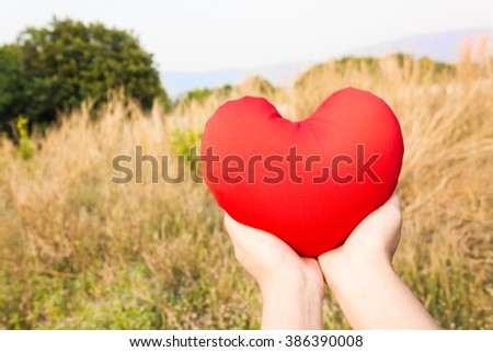 Women hand gently hold red heart with love, careness and restpect on wild grass flower field background with copy space