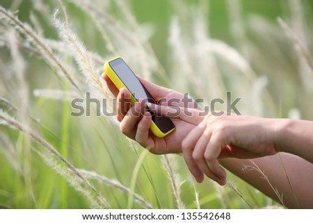 women's hand using smart phone with reeds background. - stock photo
