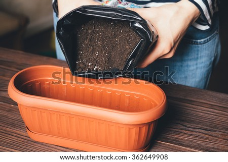 Women's hands poured soil in the pot for growing plants - stock photo