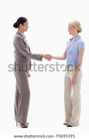 Women shaking hands happily against white background - stock photo