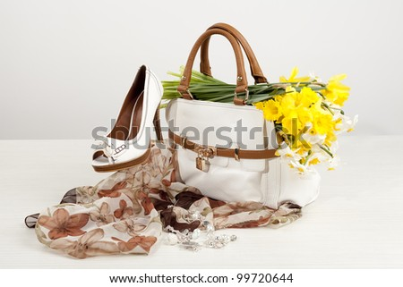 women shoes and bag - stock photo
