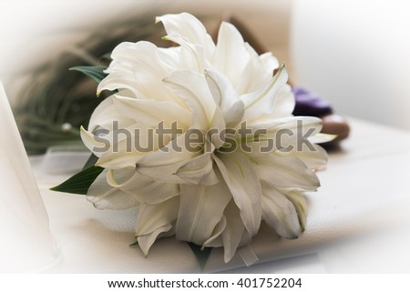 Women shoes with flowers on a light background - stock photo