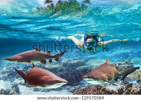 Woment snorkeling in the tropical water with dangerous bull sharks - stock photo