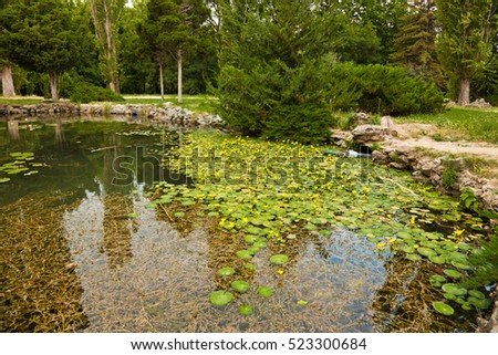 Pond stock photos royalty free images vectors for Artificial pond