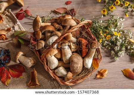 Wonderful colors of autumn / studio photography of beautiful autumn leaves and mushrooms in wicker basket  - stock photo