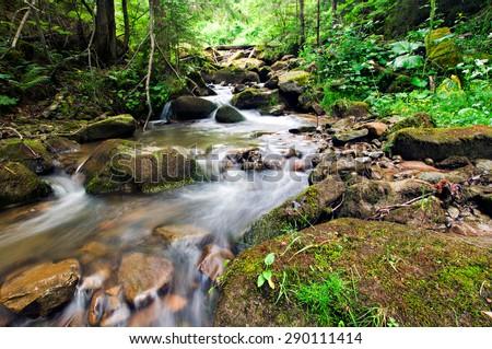 Wonderful forest waterfall. Ukrainian Carpathians - stock photo