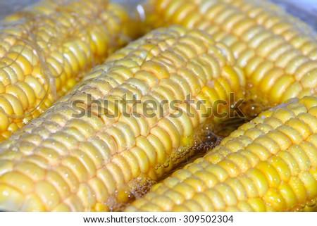 wonderful juicy ripe corn as a food item - stock photo