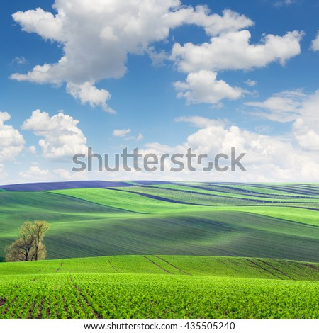 Wonderful Landscape of fields in beautiful colorful and striped hills, Czech Republic, Europe