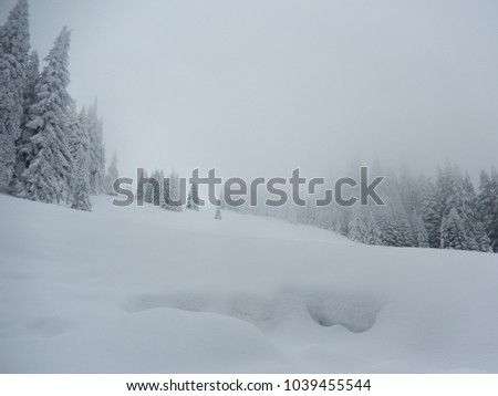 Wonderful snow in the mountains