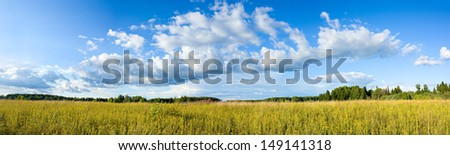 Wonderful summer panoramic view of clouds and yellow wildflowers on meadow - stock photo