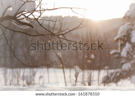 Wonderful sunny winter scene. The sun kisses a white winter wonderland. Snow everywhere. - stock photo