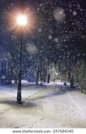 Wonderful winter evening in a city park - stock photo
