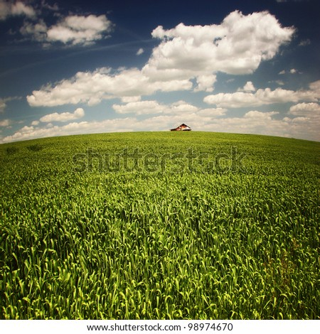 Wonderland green field and sky background with little house - stock photo