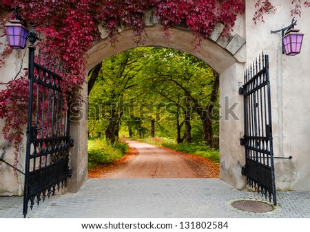 Wonderland in region of Vidzeme, Latvia, Europe - stock photo