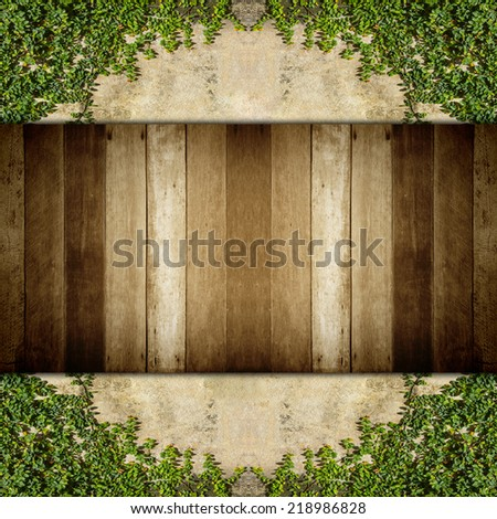 wood and Green creeper plant on  wall for texture