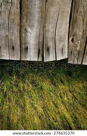 Wood background.  Grass background. Grass over wood. Nature background with grass and wood - stock photo