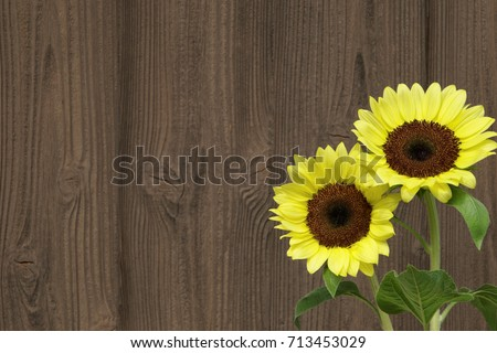 Wood Background With Sunflowers