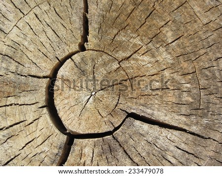 Wood Background. Wood Texture Wallpaper - stock photo