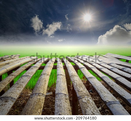 Wood board in the rises  field, Thailand - stock photo