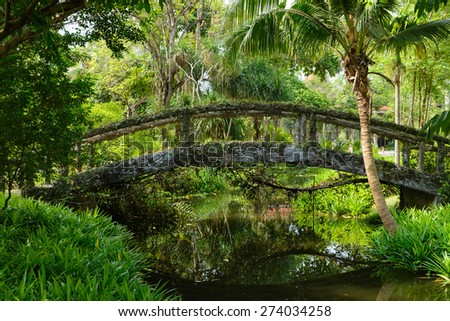 wood Bridge in the green forest