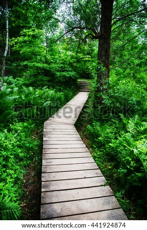 Wood Bridge Limehouse Bruce trail Halton Hills Ontario - stock photo