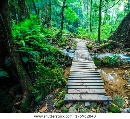 wood bridge over the waterfall in Forest - stock photo