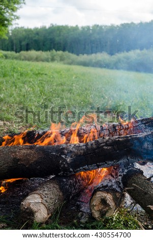 wood burns on the grass - stock photo