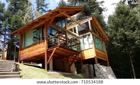 Wood cabin, New architecture