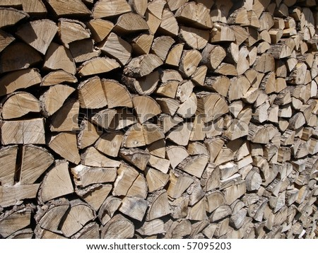 wood chopped and stacked waiting for winter