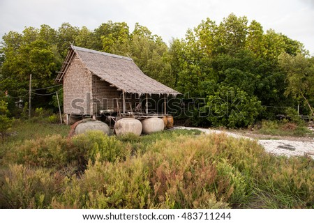 Wood cottage of Thai local fisher with among mangrove plant, Bangkok, Thailand