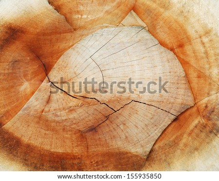 Wood cut texture - stock photo