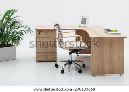 wood desk and palm on a white wall
