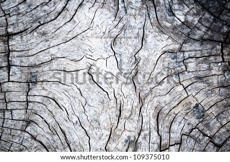 Wood detail. The old timber is located outdoors. - stock photo