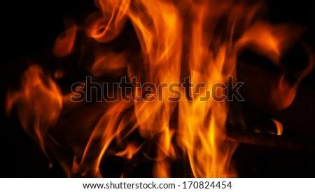 Wood fire - stock photo