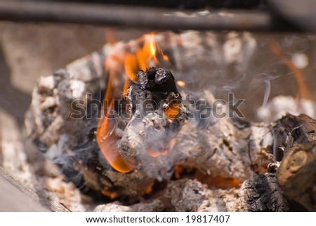 Wood fire burning in a barbecue