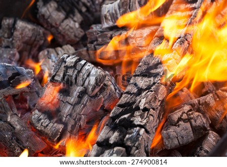 Wood fire with ash, Closeup