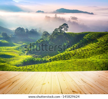 Wood floor over tea Plantations at Cameron Highlands Malaysia. Sunrise in early morning with fog. - stock photo