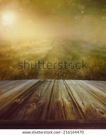 Wood floor with a prairie path in background - stock photo