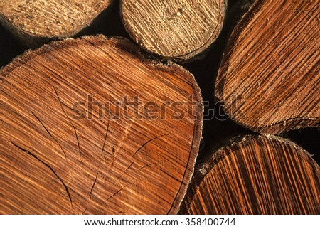 Wood for fireplace logs - stock photo
