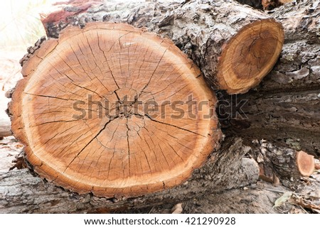 wood for making furniture - stock photo
