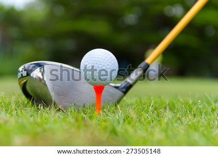 Wood golf with a golf ball on the green grass. - stock photo