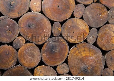 wood grain background - stock photo