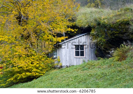 wood house in the autumn foliage