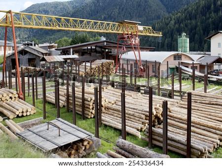 Wood Industry - stock photo