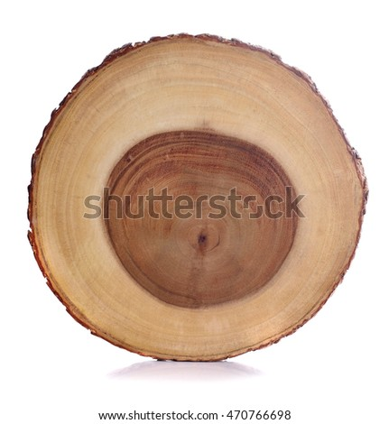 Wood isolated on a white background.