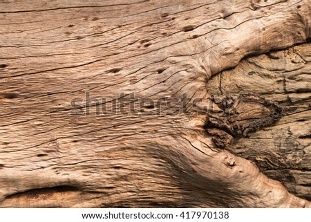 wood knot texture for background