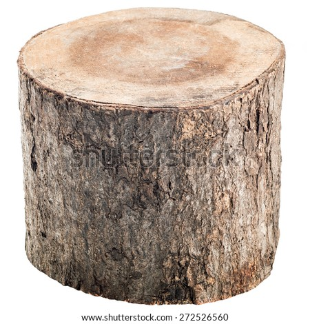 Wood log 45 degree view. Isolated on a white.  - stock photo