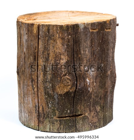 Wood log isolated on a white background