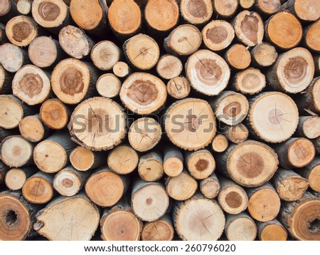 Wood logs background - stock photo